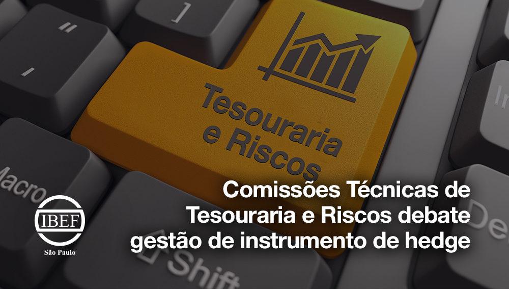 CT de Tesouraria e Riscos debate gestão de instrumento de hedge
